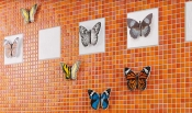 Плитка Jasba Butterfly