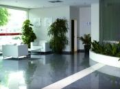 Плитка Sal Sapiente Luxury -PLX, MLX