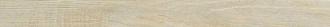 Alnus Puro Battiscopa AU01B7