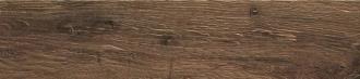 Alnus Terra AU06EA