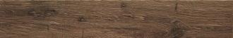 Alnus Terra AU06L5