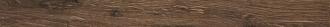 Alnus Terra Battiscopa AU06B7