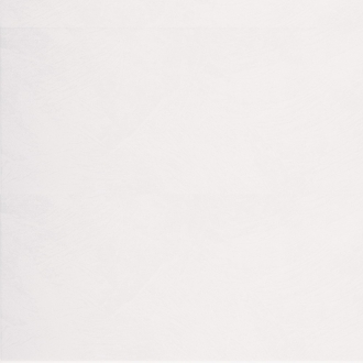 Dolce Antre White FT3ANR00