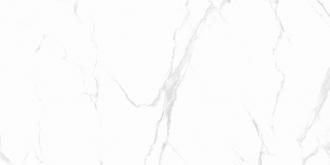 Carrara Classic Grey Polished