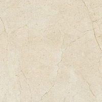 Anthology Marble Tozzetto Little Royal Marfil Lapp