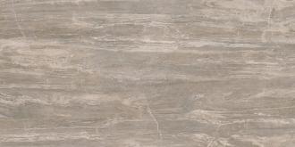 Arabesque Silver Lux Rett. PF60000381