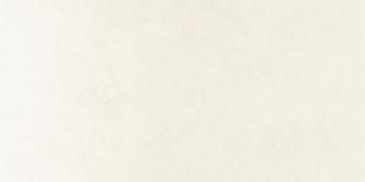 Arc White