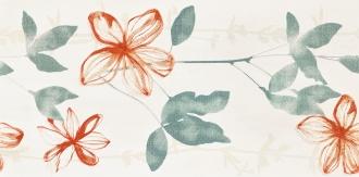Aroma Oregano Bouquet Ret.