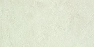 Evolve White D067