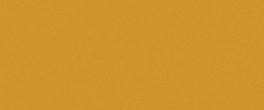 Керамогранит Levantina Basic Orange 50x100 матовый