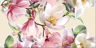 Boho Magnolia