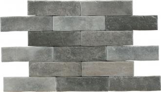 Brickwall Tortora
