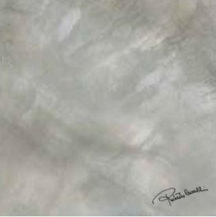 Bright Pearl Silver Firma Rett. 531229