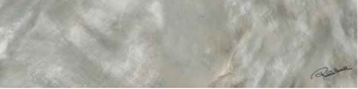 Bright Pearl Silver Firma Rett. 531235