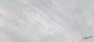 Bright Pearl Snow Firma Rett. 531103