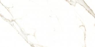 Calacatta Puro Rettificato 66097