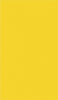 Color Line Yellow 0445