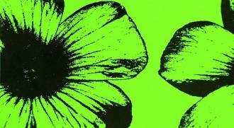 Colour D-Floral Green