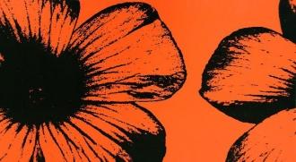 Colour D-Floral Orange