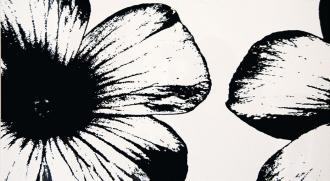 Colour D-Floral White