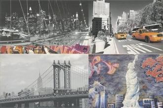 Evolution Grafiti Multicolor