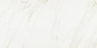 Evolutionmarble Calacatta Lux MK6F