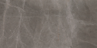 Evolutionmarble Grey Lux MH22