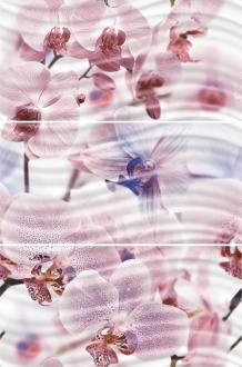 Fortuna Princess Орхидеи 1604-0032