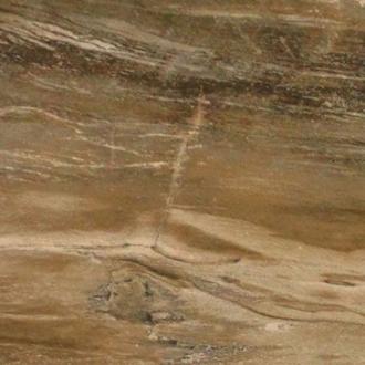 Fossil Savoia