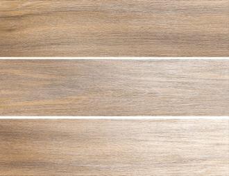 Фрегат коричневый SG701400R
