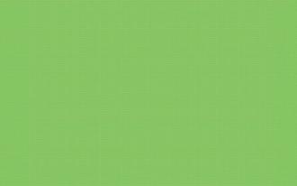 Fresh Verde