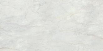 I Marmi Bernini Lapp. Rett.