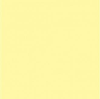 Гармония желтый SG924500N