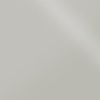 Моноколор PR Светло-серый