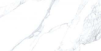 23211 Calacatta Extra White Nat R