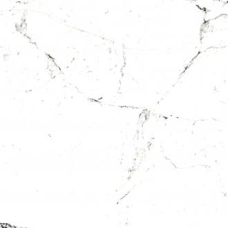 20577 Tucci Black/60x60/P