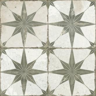 23199 FS Star Sage