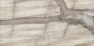 Petrified Tree Core Grey Panther Rett