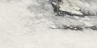 Etoile Renoir Mat. Rett. 761683