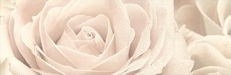Розовый город 12056/3F