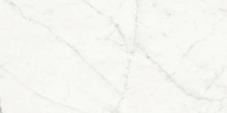 Sq. Bianco Venato Extra N. P62300