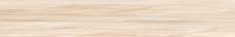 Tanduk Battiscopa Conchiglia Lapp. 556728