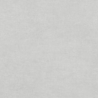 Kord Grey N52520