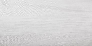 Керамогранит Terratinta Betonwood White TTBW0145N 45x90 матовый