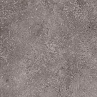 Stonenature Fossil TTSN0322N