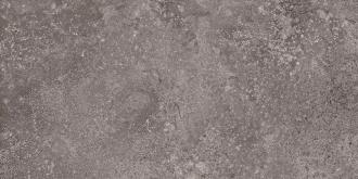 Stonenature Fossil TTSN0336N
