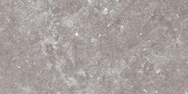 Керамогранит Terratinta Stonevolution Grijs TTSE0136LP 30x60 лаппатированный