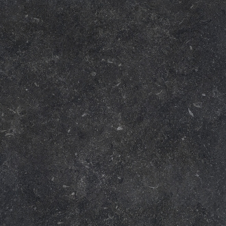 Stonevolution Zwart TTSE0260N