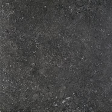 Керамогранит Terratinta Stonevolution Zwart TTSE0260V 61,5x61,5 матовый