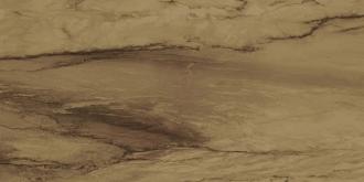 Venus Visone Lapp. Ret.